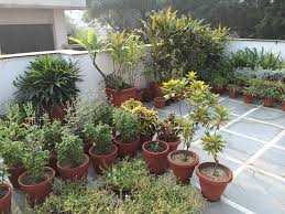Small Picture Balcony Gardening Ideas India Best Balcony Design Ideas Latest