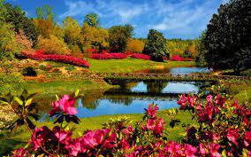 Nature Springtime Wallpapers - Top Free ...