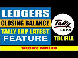 Check Ledgers How To Check Ledgers Closing Balance In Tally Erp 9 All Ledger