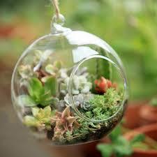 Aliexpress.com : Buy Decor Ball Globe Shape Clear Transparent Hanging Glass  Vase Flower Plants Terrarium Vase Container DIY Wedding Home Decoration  from ...