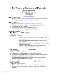 Professional Resume Template Free Online With Examples Job Resume