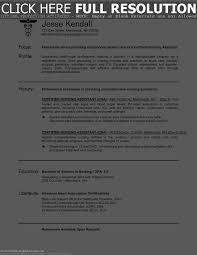 Resume For Nursing Assistant Resume Online Builder