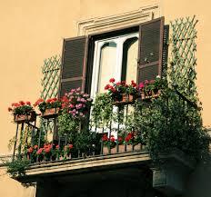 Decoration: Ashtree - Balcony Gardens