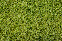 fake grass texture. Artificial Grass Texture For Background Stock Photos Fake
