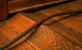my hardwood floor got wet what should