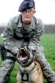 a defender s best friend > whiteman air force base > display hi res photo details
