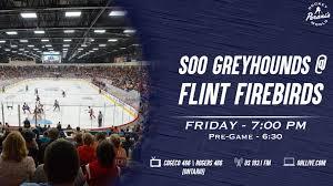 Preview Firebirds Greyhounds Meet In Flint Friday Flint