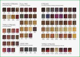 Loreal Majirel Color Chart Pdf 16 Unfolded Luocolor Color Chart