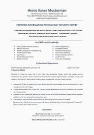 Sample Cio Resume Best Of Cio Resume Example My Resume