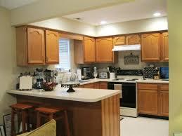 Grey Stained Kitchen Cabinets Kitchen Interesting Staining Kitchen Cabinets Diy Kitchen