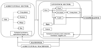 Flowchart Of Sheep Production For Integrated Crop Livestock