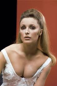 1302 best images about Sharon Tate on Pinterest Actresses Patty.