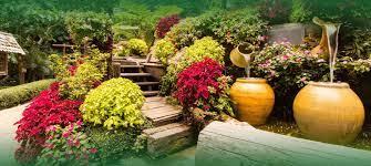 Habitania decor, karachi, sindh, pakistan. Professional Garden And Lawn Landscaping Services In Karachi Pakistan Greenlife
