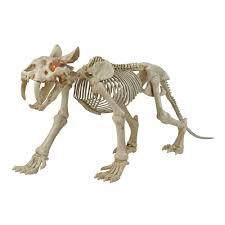 animated skeleton sabretooth with led eyes