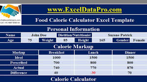 Download Food Calorie Calculator With Monthly Calorie Log