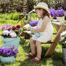 Regaderas para tus plantas y flores: Compras - Jardinería