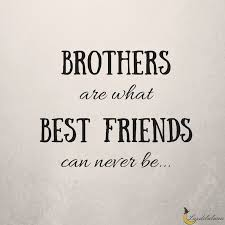 Brother Quotes Cool 48 Awesome Brother Quotes Luzdelaluna