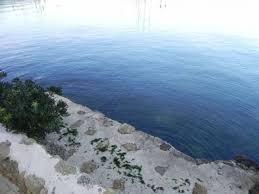a vendre maison contemporaine pieds dans l eau martigues 13500 immobilier bord de mer bouches du rhône 13
