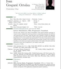 Professional Resume Samples In Word Format A Professional Resume ...