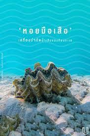 Urban Creature - 'หอยมือเสือ' เครื่องบำบัดน้ำเสียของท้องทะเล .  ตอนนี้ข่าวในโลกโซเชียลกำลังคุกรุ่น เมื่อรายการเกาหลี 'Law of the Jungle'  ได้มาถ่ายทำรายการในประเทศไทยที่เกาะมุก อุทยานแห่งชาติหาดเจ้าไหม จังหวัดตรัง  แล้วมีภาพหนึ่งในผู้ร่วมรายการจับ 'หอย ...