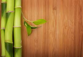 when it is time to remodel and replace the flooring in your home many homeowners are thinking green the number of green flooring s available