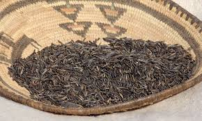 Image result for manoomin, or wild rice