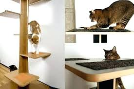 molly simple cat tree easy diy plans build house how to find free for building your cat tree measurements simple diy