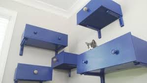 Kittens 1501105435820jpeg Hgtvcom Diy Cat Playground Hgtv