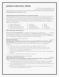 Resume Writing Service Cost Download Resume Builder Service Resume New Readwritethink Resume