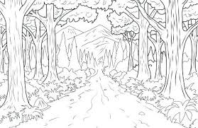 Coloring Pages Forest Coloring Pages Free Enchanted Rainforest Pdf