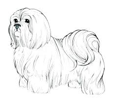 Puppy Dog Coloring Images Puppy Dog Coloring Page Dogs Pages Free