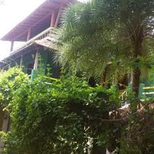 green s guesthouse