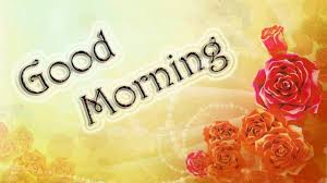 good morning with flowers hd wallpaper free colourful wonderful 768x480