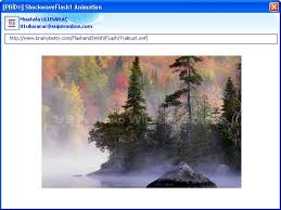 Microsoft Office Excel Kod Kılavuzu Shockwaveflash1 Animation