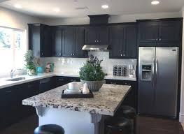 espresso kitchen cabinets. uncategorized:espresso kitchen cabinets 002 espresso 003