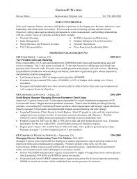 Objective In Resume For Marketing Marketing Resume Objectives Examples Examples Of Resumes 11