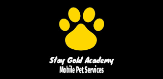 <b>Stay Gold</b> - Apps on Google Play