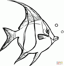 Angel Fish Coloring Pages - Printable Coloring Sheets
