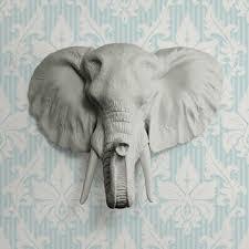 elephant head for wall s on wanelo