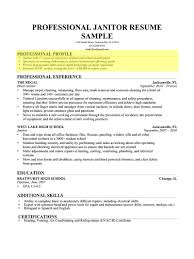 Example Of A Profile For A Resume