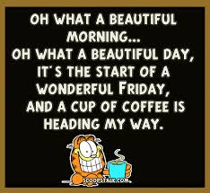 Funny Morning Quotes Amazing Good Morning FRIDAY FINALLY Pinterest Garfield Quotes Quotes