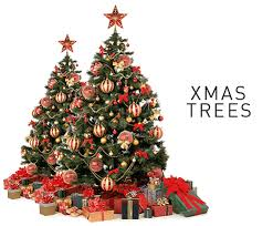 Buy Christmas Trees, Decoration and Lights Online