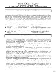 Internal Auditor Resume Objective It Resume Design Internal Auditor Example Template Audit Form 13