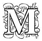 Раскраски буквы живые