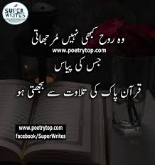 Love Quran Quotes In Urdu Gambar Islami