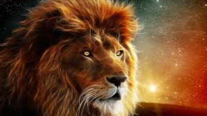 lion wallpaper hd digital art