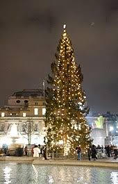 Trafalgar Square Christmas tree - Wikipedia