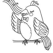 Small Picture Toco toucan coloring pages Hellokidscom
