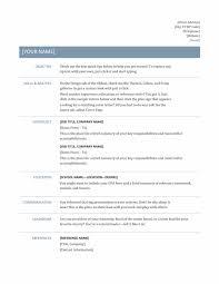 Professional Resume Templates Unique Professional Resume Template Resume Cv