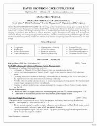 Uncategorized 16 Resume Format For Supply Chain Executive